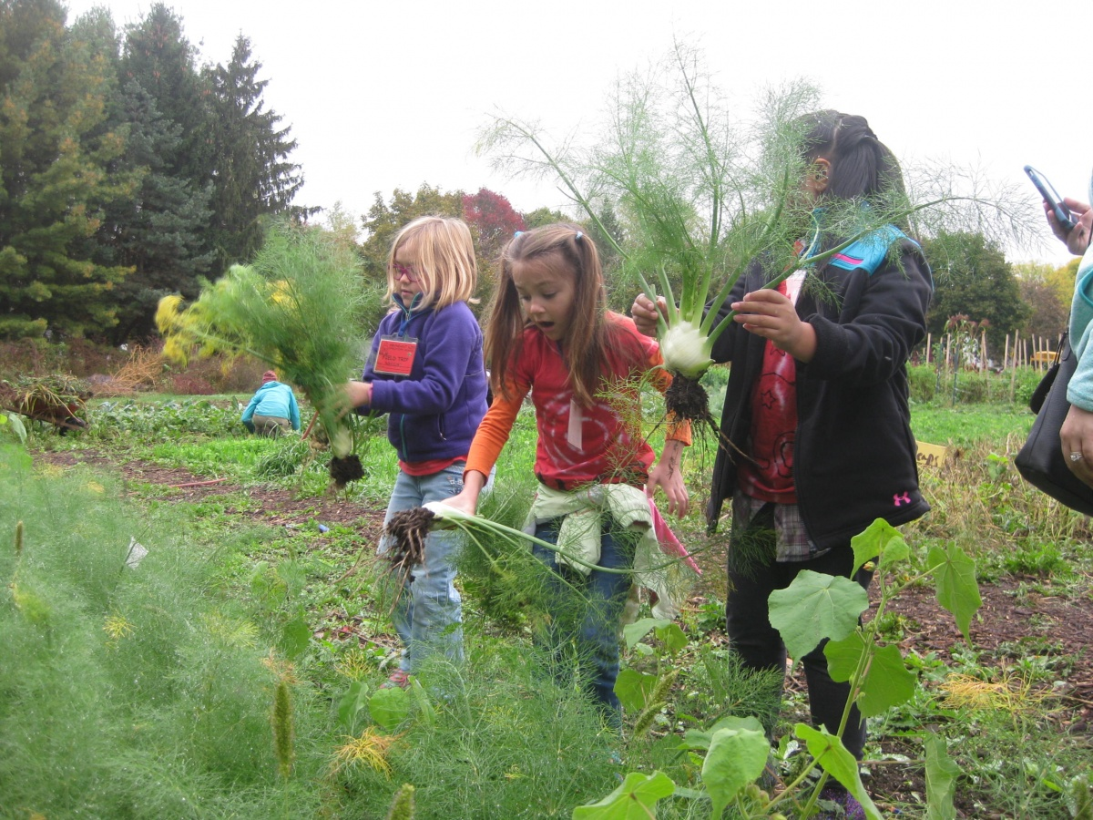 Field Trips To The Goodman Youth Farm