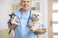 Miami-Dade County Animal Services