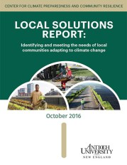 local-solutions-2016-report-lr
