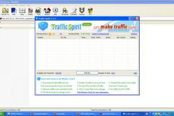 Traffic Spirit