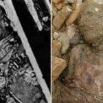 Hallaron en Teherán la momia de Reza Pahlavi, el Sha de Persia cuya tumba fue destruida por la Revolución Islámica