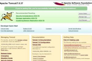 Apache Tomcat Frontpage