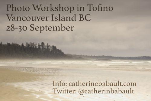 Photo Workshop in Tofino