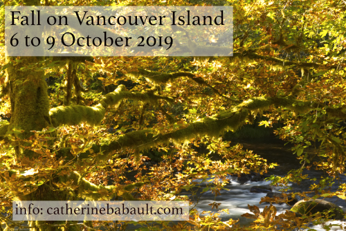 Nature Photography Workshop in the Field! - Comox Valley