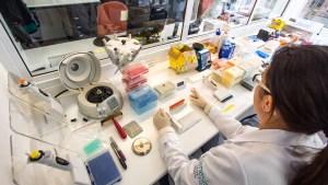 Genesis Genetic Brasil - Hospitalar e Saúde