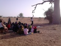 branca danse nature baobab9