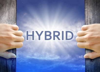 The growth of the hybrid