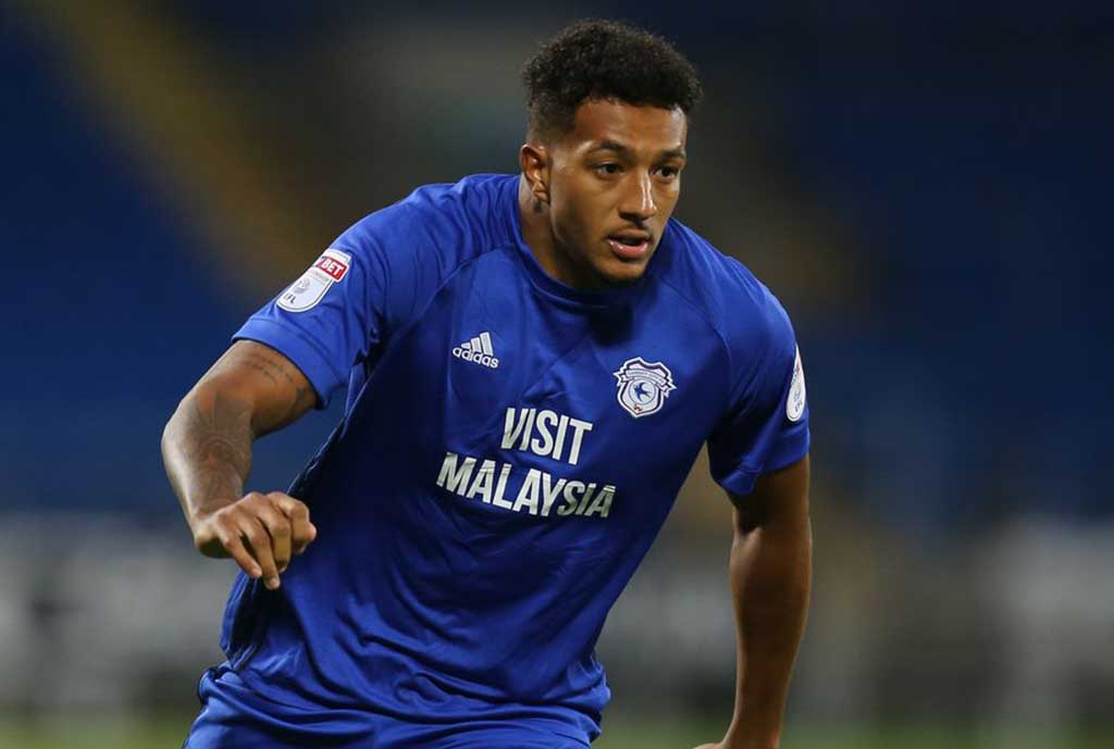Bluebirds Rocked By Injury Blow