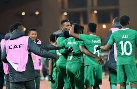 CHAN 2020 Qualifiers: Nigeria To Face Either Togo Or Benin