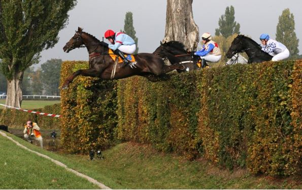 Tiger Roll's Grand National Odds Slashed For Grand National Repeat
