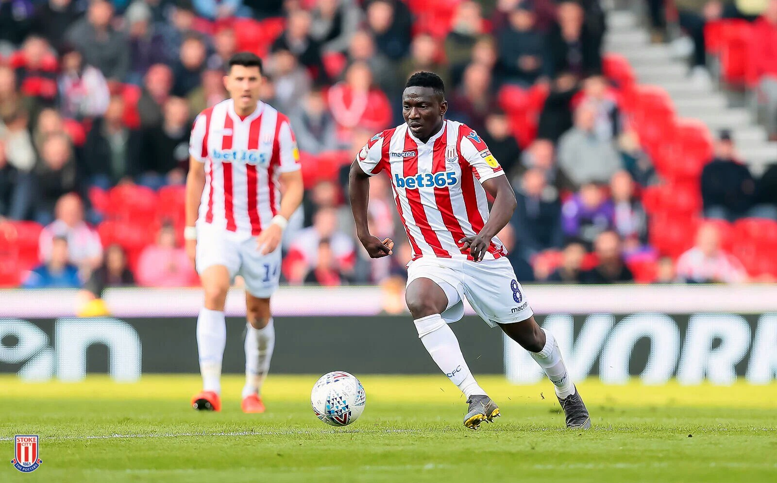 Bruce: Etebo Too Good To Be Playing For Stoke City