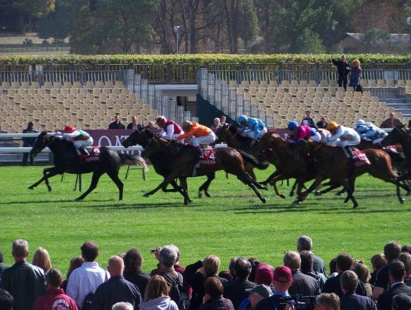 Anodor Kept Under Wraps For French Guineas