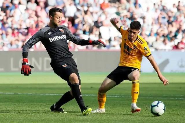 European Giants Watching Wolves Star