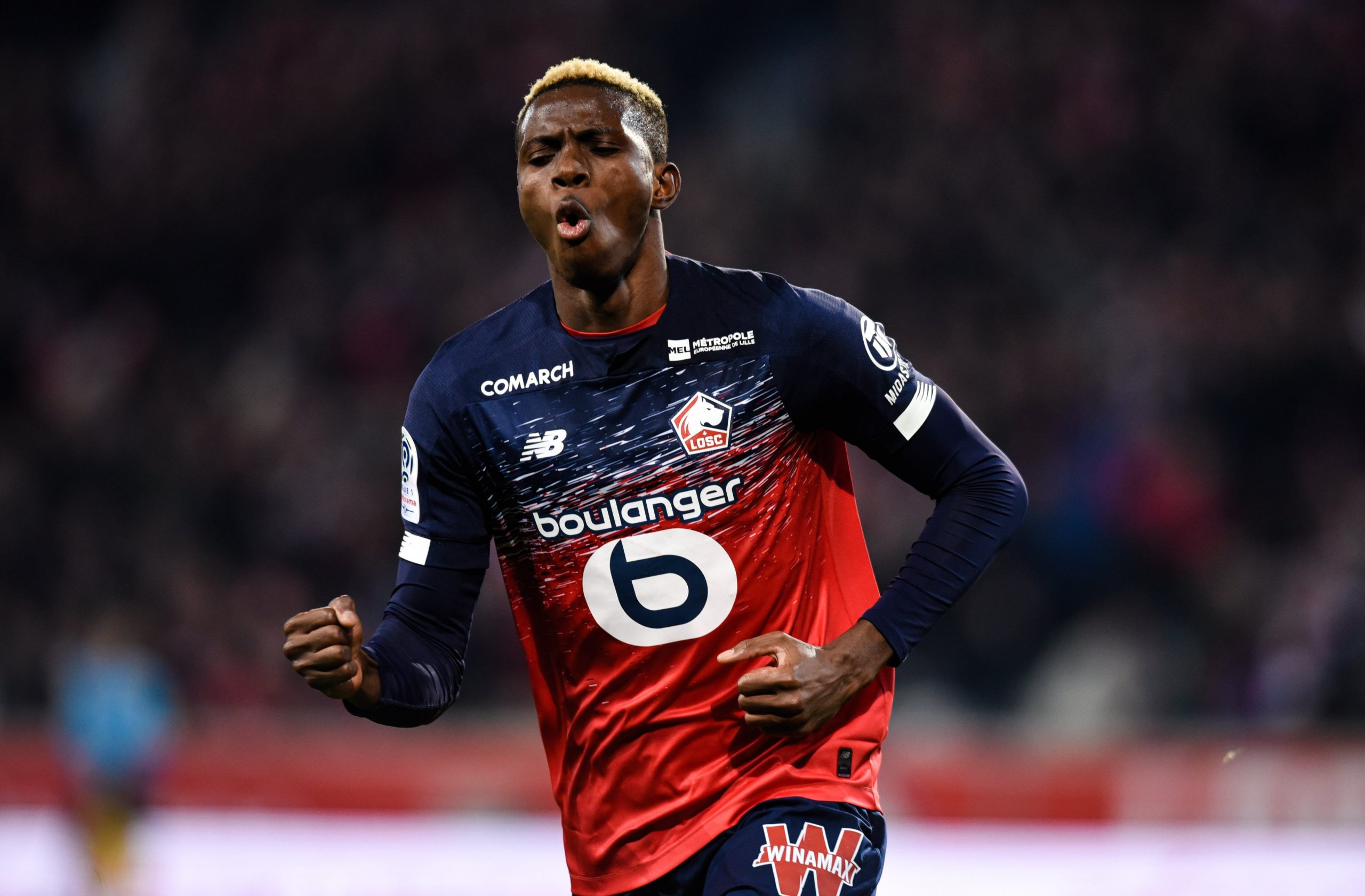 Lille To Reject January Offers For Osimhen