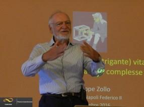 Giuseppe Zollo - Complexity Management School