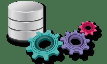 Basic SQL Queries