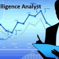 Business Intelligence Analyst Job Description