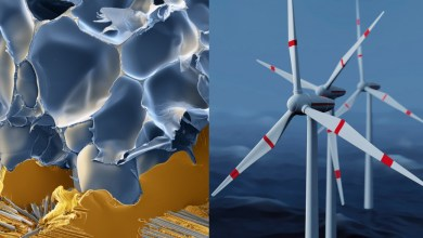 Photo of BASF Launch New Wind Energy Products