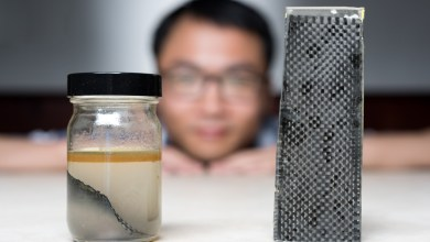 Photo of Researchers Find New Way to Recycle Carbon Fibre