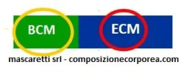 ECM_BCM