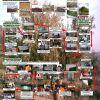 Mi CV divulgativo: III Certamen de Posters de Divulgación, V Jornadas de Jóvenes Investigadores, Bilbao 2007