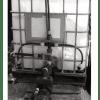 El té de compost aumenta la producción de lechuga y col rábano en agricultura ecológica