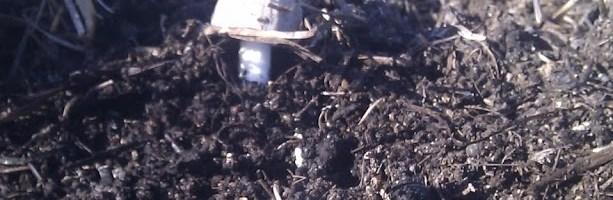 Aplicación agrícola de los composts