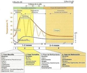 Sucesión microbiana y ambiental durante el compostaje