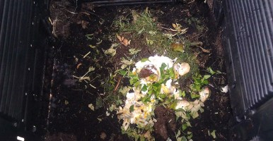 Materia orgánica en agricultura y los residuos orgánicos