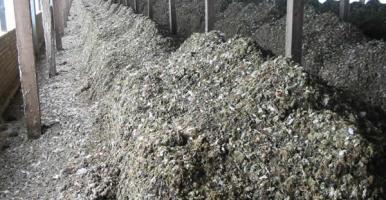 Uso del estiércol como fertilizante