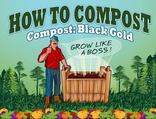 Infografia como hacer compost