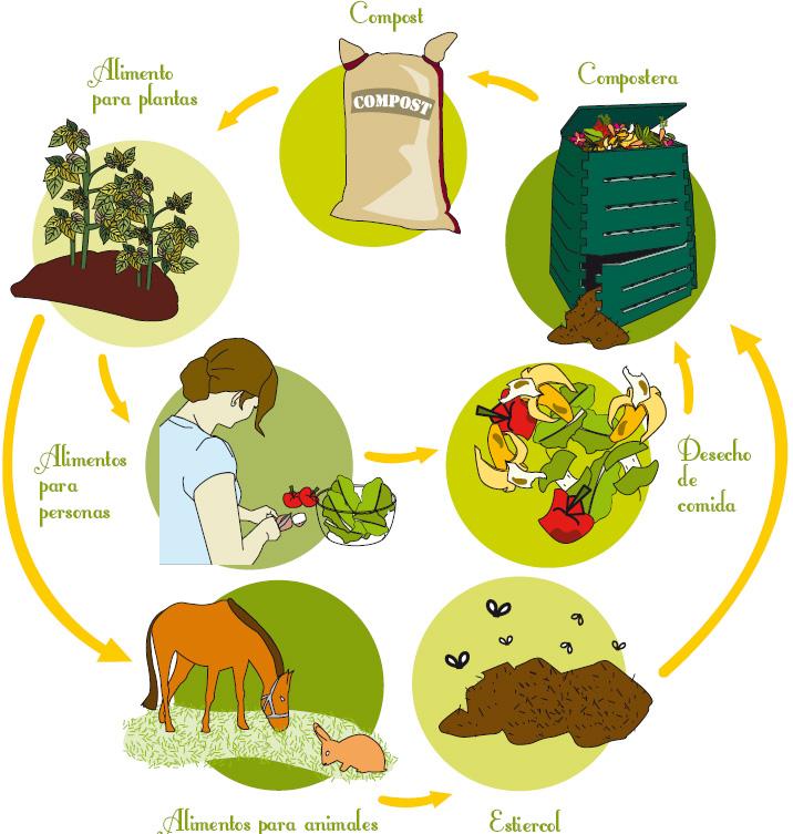 Ciclo del compost