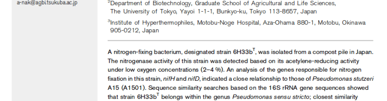 Bacterias que fijan nitrógeno atmosférico (N2) en el compost
