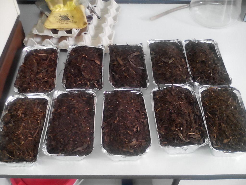 Aspecto de la mezcla de compostaje