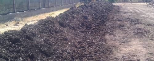 ¿Cómo hacer compost?