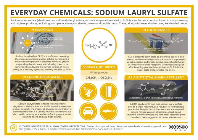 Everyday Chemicals – Sodium Lauryl Sulfate & Shampoo