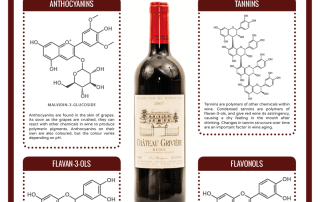The Chemistry of Wine 2016 (1)