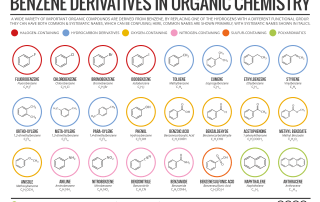 Benzene Derivatives in Organic Chemistry