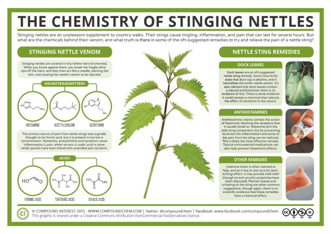 The Chemistry of Stinging Nettles 2016