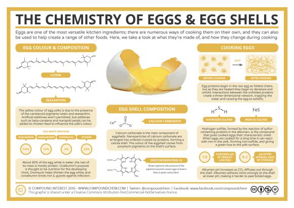 The Chemistry of Eggs & Eggshells 2019