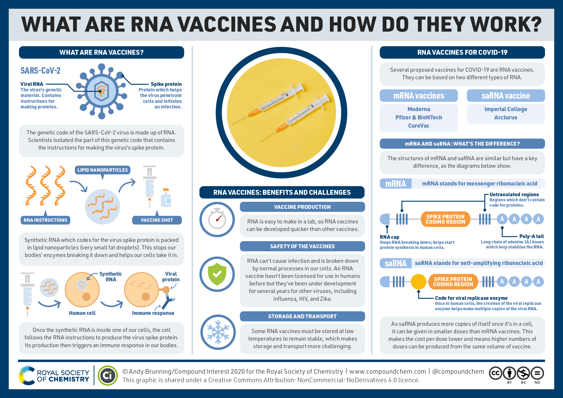 RNA vaccines and how they work