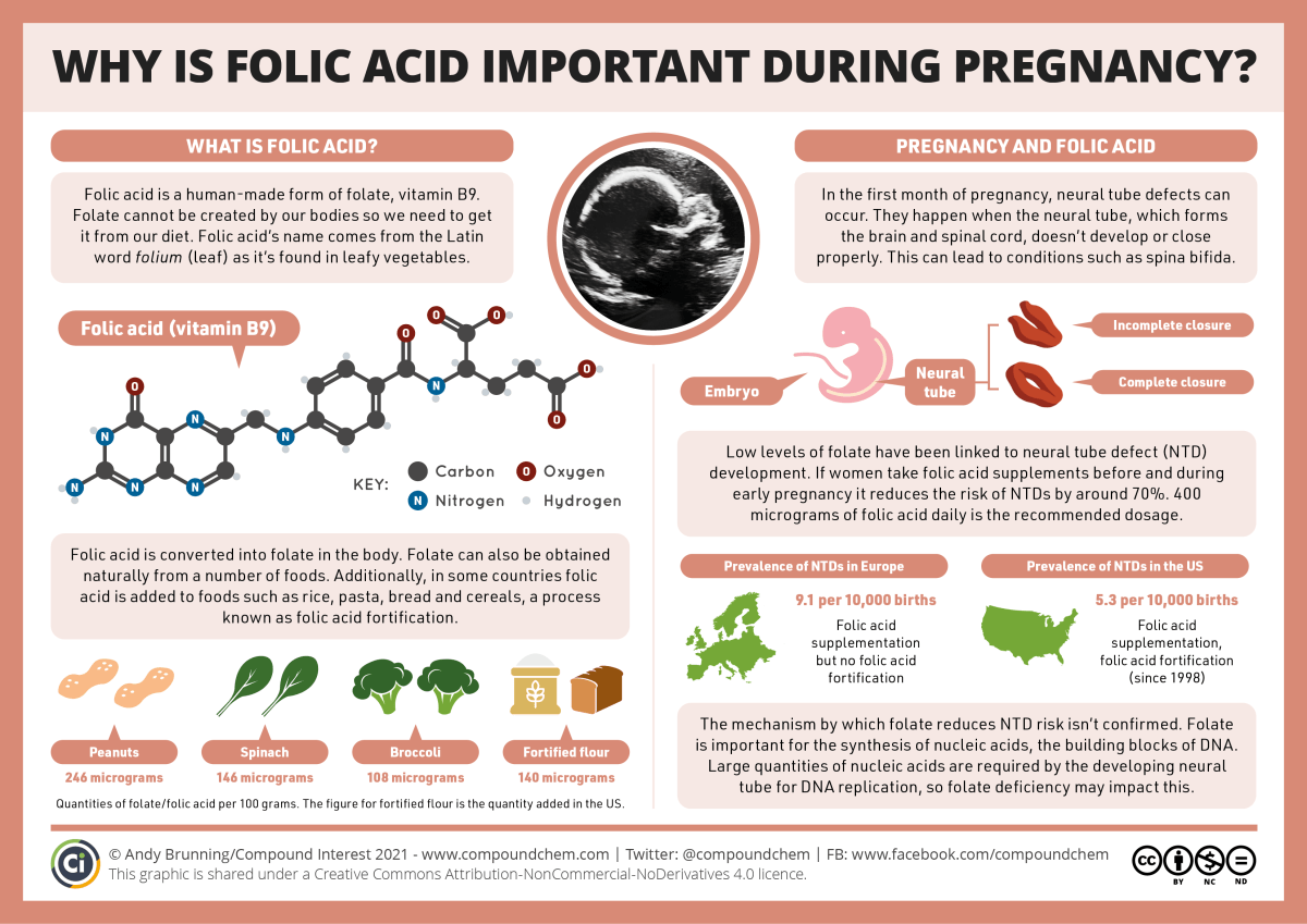 Infographic titled 'Why is folic acid important during pregnancy?'. Folic acid is a human-made form of folate, vitamin B9. We have to get it from our diet. It's converted into folate in the body. Folate is found naturally in a number of foods, particularly leafy vegetables, seeds, and nuts. It can also be added to some foods including flour, a process known as fortification. Low levels of folate have been linked to neural tube defects (NTDs). These happen when the neural tube, which forms the brain and spinal cord, doesn't develop or close properly, leading to conditions like spina bifida. Taking folic acid before and during early pregnancy reduces the risk of NTDs by about 70%. The mechanism by which folate reduces NTDs isn't known, but folate is important for building nucleic acids, the building blocks of DNA. Large quantities of nucleic acids are required by the developing neural tube for DNA replication, and folic acid deficiency may impact this.