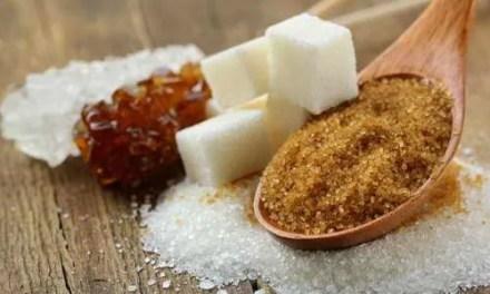 Cómo elegir el azúcar para la kombucha