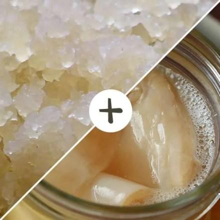 Comprar Pack Kéfir de Agua + Kombucha