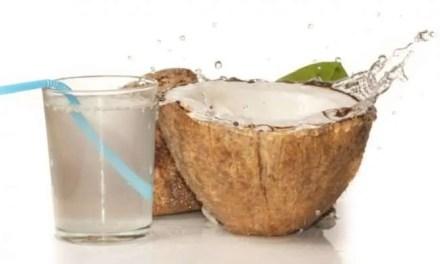 Poder curativo del coco kéfir