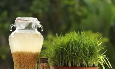 La fermentación se reinventa para rescatar sabores ancestrales