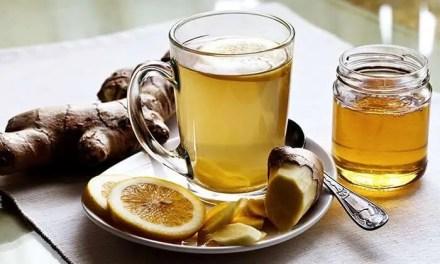 Kombucha, la nueva bebida -que te hará bajar de peso- de la que todos hablan