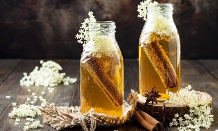 Kombucha: 3 beneficios del hongo saludable que es tendencia