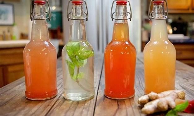 Ginger Ale casero de Kéfir de Agua