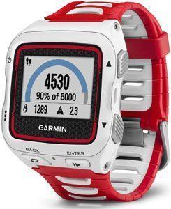 Garmin Forerunner 920XT - 300